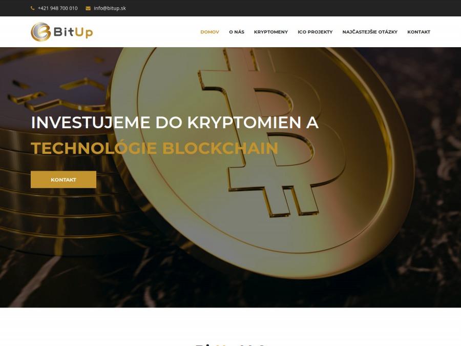 BITUP LLC